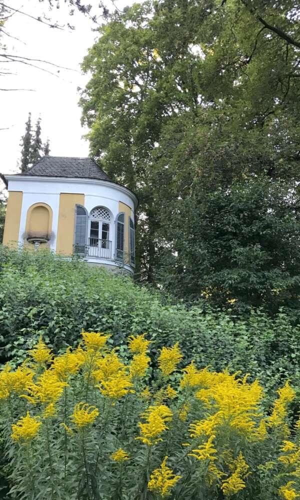 Neu-Ulm Glacis
